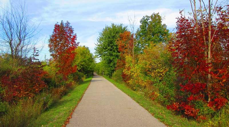 Hiking Trails in Southeast Michigan