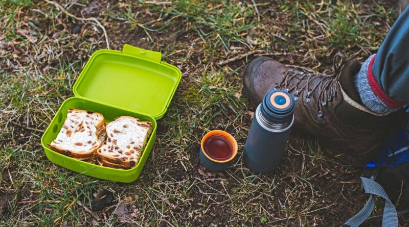 How to Keep Food Cold While Backpacking?