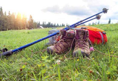 Best Budget Trekking Poles